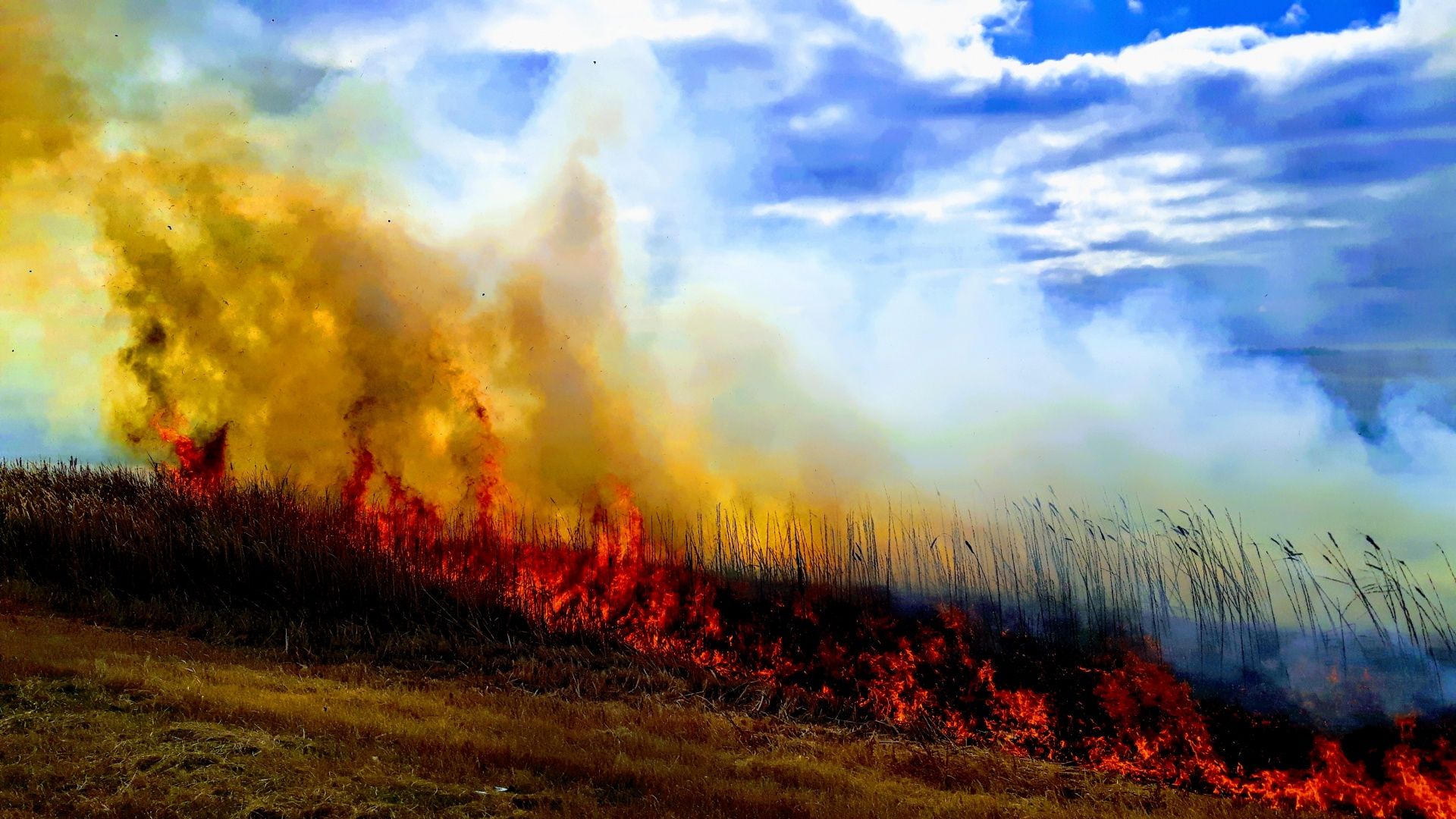 Interdiction des feux à ciel ouvert